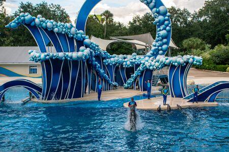 Orlando, Florida. November 06, 2019. Trainer jumping on dolphin at Seaworld 31