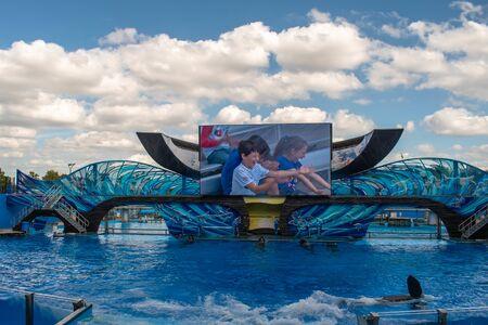 Orlando, Florida. November 22. 2019. Fantastic One Ocean Show at Seaworld 3