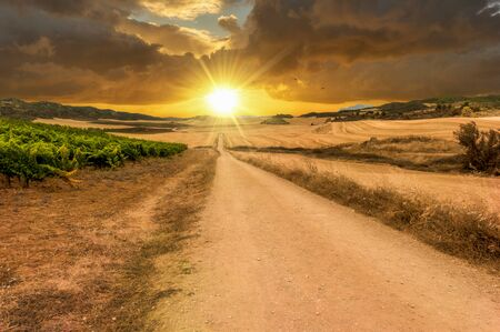 Photo for The sun at sunset on the road to Santiago de Navarra, Spain - Royalty Free Image