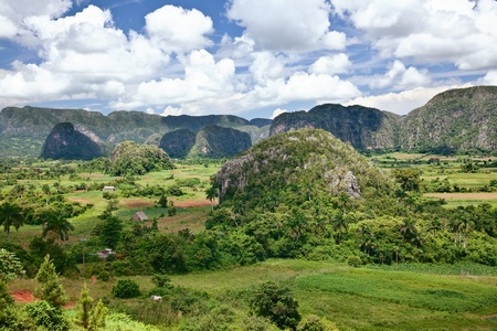 The valley of Vinales in Cuba.