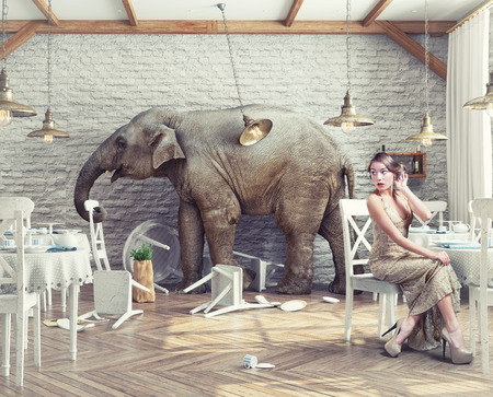 Photo for the elephant calm in a restaurant interior. photo combination concept - Royalty Free Image
