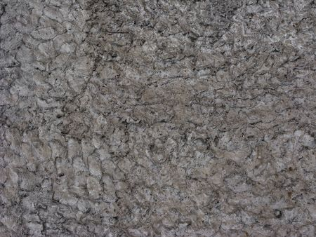 Fragment of rough cement wall surface, useful as background