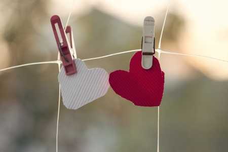 Two homemade hearts on line in front of nature