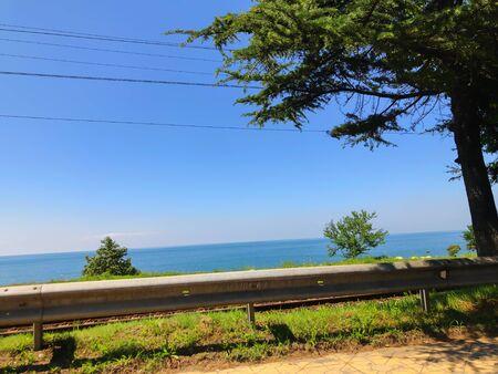 Photo for Cloudless sky, horizon, sea, road, tree near the road. - Royalty Free Image