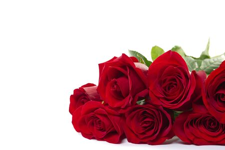 Photo for beautiful bouquet of red roses lies on a white background. Young red roses are very fragrant. Dutch flowers are popular all over the world and delight millions of women around the world. - Royalty Free Image