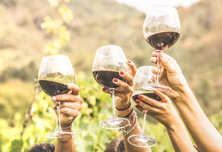 Foto de Hands toasting red wine glass and friends having fun cheering at winetasting experience - Young people enjoying harvest time together at farmhouse vineyard countryside - Youth and friendship concept - Imagen libre de derechos