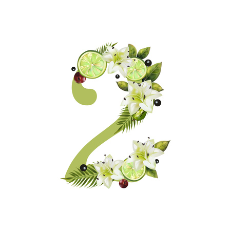 Illustration pour Digit Two of realistic lime and flowers on a white background. The figure is decorated with lilies, palm leaves and cherries - image libre de droit