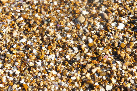 small pebbles sand background photo close-up, bright sea pebbles