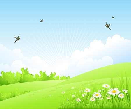 Clean spring amazing scenery. Vector nature landscape.のイラスト素材
