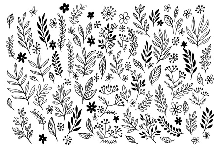 Set of sketches and line doodles  hand drawn design floral elements. Vector illustration EPS10