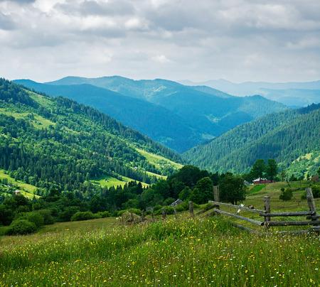 Summer mountain landscape. Ukrainian Carpathians
