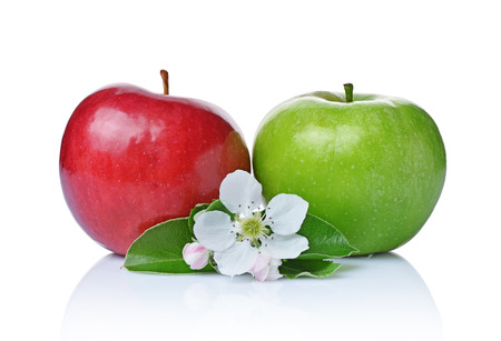 Photo for Perfect fresh ripe green and red apples with leaves and spring flowers isolated on white background - Royalty Free Image