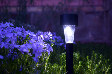 Photo for A solar-powered lamp illuminates flowers in the garden at night. - Royalty Free Image