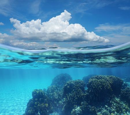 Blue Sky & Clouds, Underwater Split