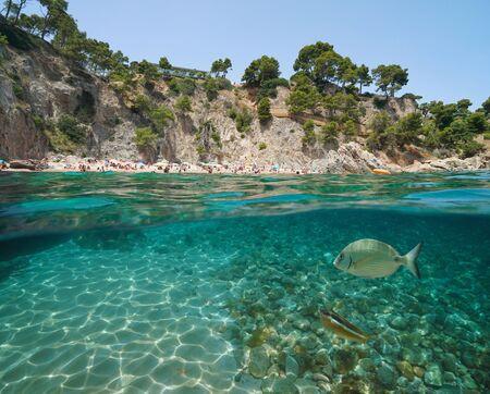 Photo pour Spain beach on rocky coastline with fish underwater near Calella de Palafrugell, Costa Brava, Mediterranean sea, Catalonia, split view half over and under water - image libre de droit