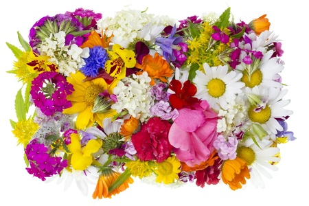 Summer simple garden flowers heap texture  isolated. Season  nature concept