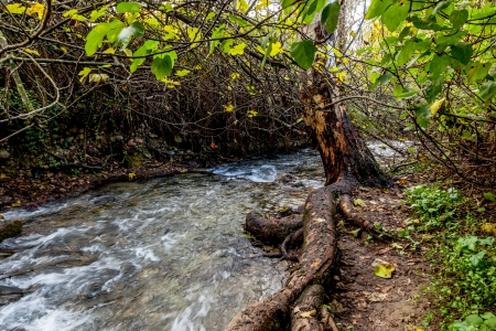 River Majaceite between the towns of El Bosque and Benamahoma on the province of Cadiz, Spain