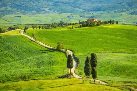 Foto de Landscape with a cypresses lined path near Pienza town. Val d'Orcia in Tuscany, Italy, Europe. - Imagen libre de derechos
