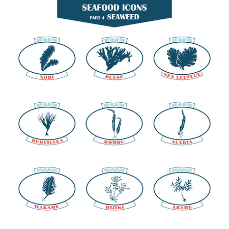 Seafood icons. seaweed icons. Can be used for restaurants, menu design, internet pages design, in the fishing industry, commercialのイラスト素材