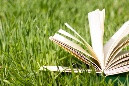Foto de Summer spring backgound with stack of books and open book and bokeh. Back to school. Open book fanned pages. Copy Space - Imagen libre de derechos