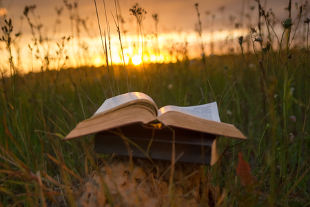 Foto de Opened hardback book diary, fanned pages on blurred nature landscape backdrop, lying in summer field on green grass against sunset sky with back light. Copy space, back to school education background. - Imagen libre de derechos