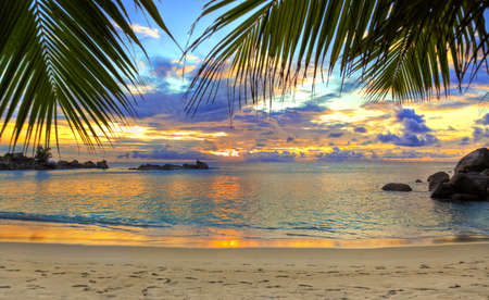 Photo for Tropical beach at sunset - nature background - Royalty Free Image