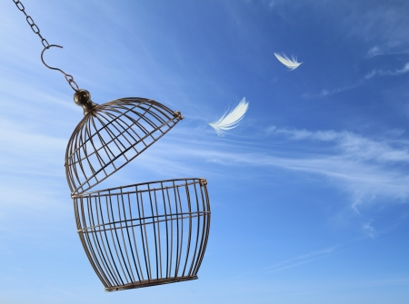 Photo for Freedom concept. Escaping from the cage - Royalty Free Image