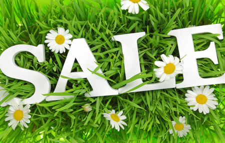 Grass with flowers and white text Sale on it