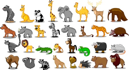 Photo for Extra large set of animals including lion, kangaroo, giraffe, elephant, camel, antelope, hippo, tiger, zebra, rhinoceros  - Royalty Free Image