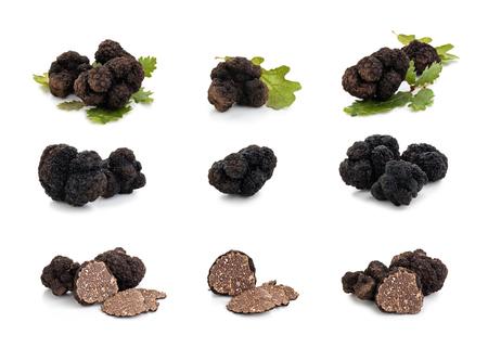 Photo pour Closeup shot of black truffles and oak leaves isolated on white background. - image libre de droit