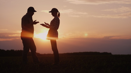 Foto de Two farmers work in the field in the evening at sunset. A man and a woman discuss something, use a tablet - Imagen libre de derechos