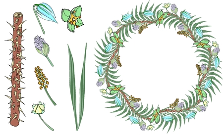 Spring wreath of young plants and flowers. Set of floral elements. Collection of hand drawn flower theme.