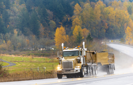 Big rig yellow gold American bonnet tip semi truck with two tipper trailers running with turned on headlight transporting commercial cargo on autumn road in rain weather with yellow trees on the hill