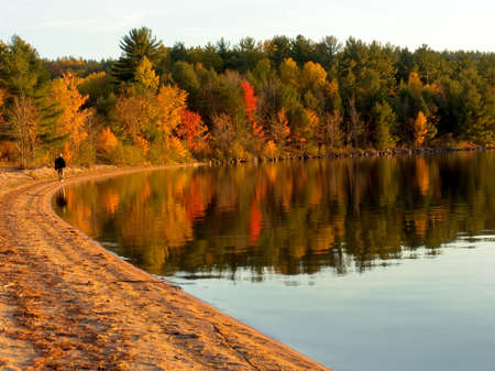 Autumn forest on the lake. Fall colors reflecting on water. Algonquin Provincial Park, Ontario, Canada. Octoberの写真素材