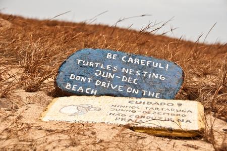 Loggerhead turtles nesting warning sign on the beaches of the island of Boa Vista