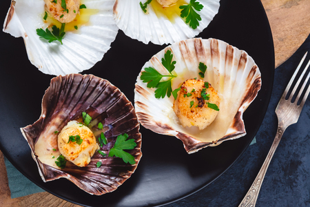 Photo pour Seared scallops shell with butter, garlic and parsley. - image libre de droit