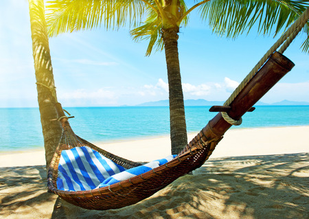 Empty hammock between palm trees on tropical beachの写真素材