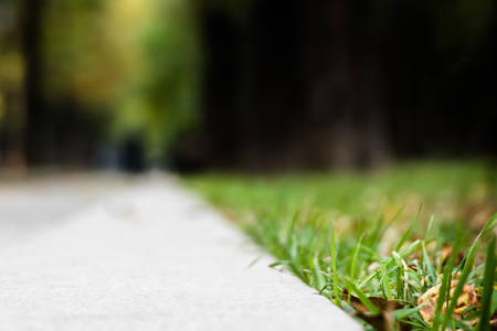 Photo for Abstract blur sidewalk with trees and grass in the city park. View from the ground level - Royalty Free Image