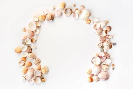 Photo for Summer concept with seashells and starfish on pastel blue background. Top view, flat lay. - Royalty Free Image