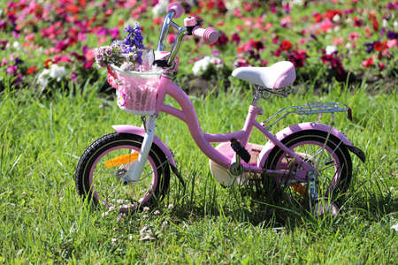 Photo for children pink bike in the park on the lawn with flowers - Royalty Free Image