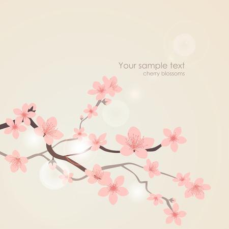 Illustration pour Vector cherry blossoms. Nature floral pink background - image libre de droit