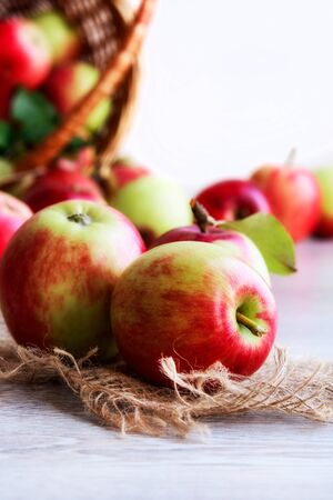Photo pour Ripe organic apples on jute fabric on a light background. - image libre de droit