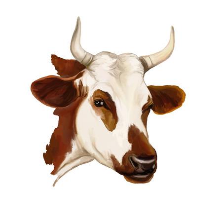 Ilustración de cow vector illustration  hand drawn  painted watercolor - Imagen libre de derechos