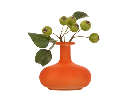Photo pour Autumn bouquet with natural pear tree branches in a glass vase on a white background - image libre de droit