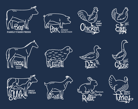 Illustration for Set of butchery logo templates. Farm animals with sample text. Modern thin line farm animals icons collection for groceries, meat stores, packaging and advertising. Vector logotype design. - Royalty Free Image