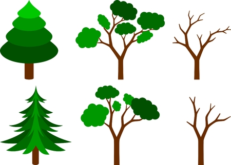collection of coniferous, leafy and naked trees