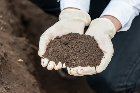 Close-up of a young researcher technician woman hands in greenhouse,in uniform, holding soil . Bio food production.