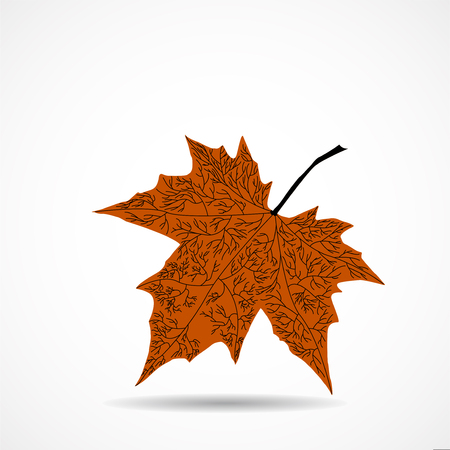 Maple leaf on white background. Vector illustration.