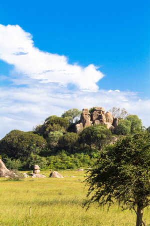 Brightly blue sky and clouds. Savanna of Serengeti, Tanzania