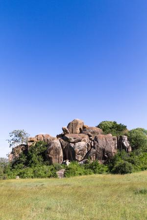 Brightly blue sky of savanna. Serengeti, Tanzania